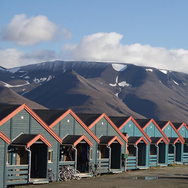 Martha Stewart Svalbard